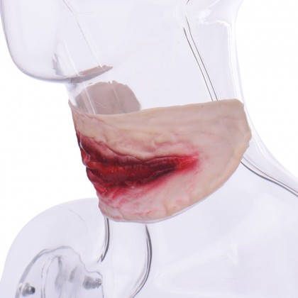 Halloween Party Costume Horror Scar Wound In Neck/Face/Body (1 Pc)